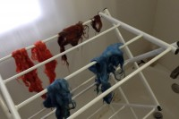 Madder, indigo, and madder+indigo dyed wool hanging on a laundry rack to dry